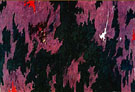 Untitled 1974 By Clyfford Still