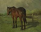 Horse By Anton Mauve