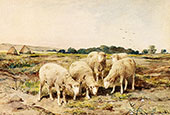 Grazing Sheep By Anton Mauve