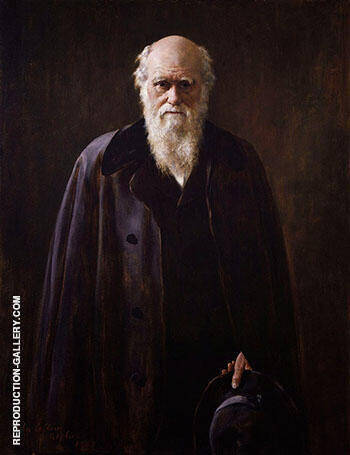 Charles Darwin 1883 By John Maler Collier - Oil Paintings & Art Reproductions - Reproduction Gallery