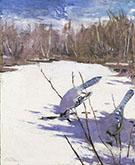 Blue Jays in Winter 1905-09 By Abbott H Thayer