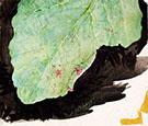 Heterocampa Biundata Walker II By Abbott H Thayer