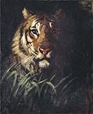 Tiger's Head 1874 By Abbott H Thayer
