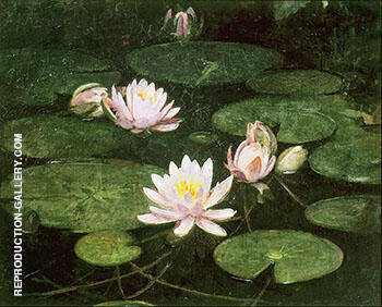Waterlilies 1884 By Abbott H Thayer - Oil Paintings & Art Reproductions - Reproduction Gallery