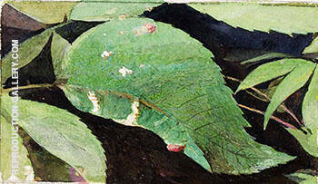 Reproduction of White Birch Leaf Edge Caterpillar by Abbott H Thayer | Oil Painting Replica On CanvasReproduction Gallery