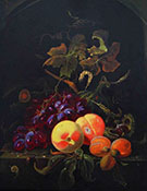 Fruit Still Life with Peaches Grapes and Apricot By Abraham Mignon