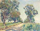 Eucalyptas Trees By Alson Skinner Clark