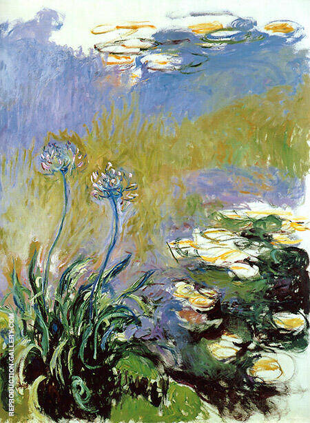 Agapanthus 1917_820 By Claude Monet - Oil Paintings & Art Reproductions - Reproduction Gallery