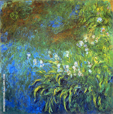Irises 1917_833 By Claude Monet