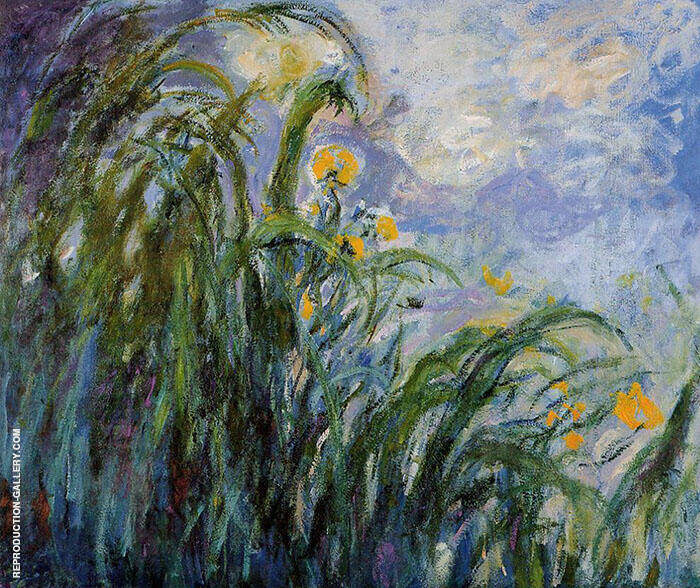 Yellow Irises 1914 Painting By Claude Monet - Reproduction Gallery