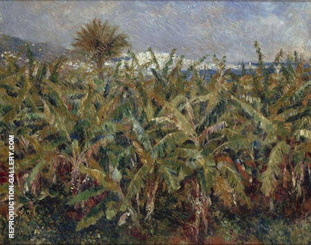 Field of Banana Trees near Algiers 1881 By Pierre Auguste Renoir - Oil Paintings & Art Reproductions - Reproduction Gallery
