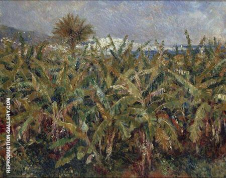 Field of Banana Trees near Algiers 1881 By Pierre Auguste Renoir