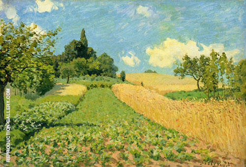 Wheatfields or Cornfields near Argenteuil 1873 By Alfred Sisley