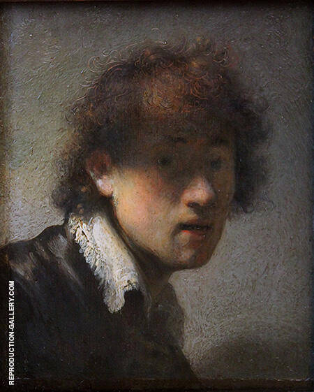 Self Portrait 1629 By Rembrandt Van Rijn