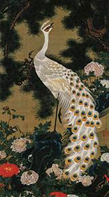 Old Pine Tree and Peacock 1761 By Ito Jakuchu