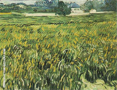 Wheat Field at Auvers with House By Vincent van Gogh