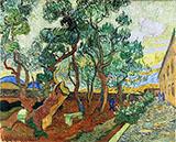 The Garden of Saint Pauls Hospital 1889 By Vincent van Gogh