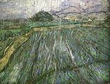 Rain 1889 By Vincent van Gogh
