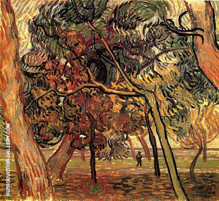 Pine Trees in the Garden of the Asylum November 1889 By Vincent van Gogh