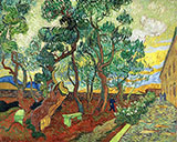 Asylum Garden of St Remy By Vincent van Gogh