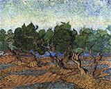 Olive Grove c 1889 By Vincent van Gogh
