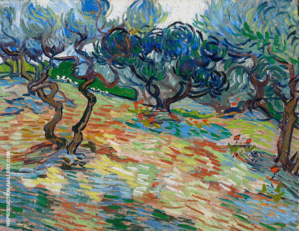 Olive Trees 1889 Painting By Vincent van Gogh - Reproduction Gallery