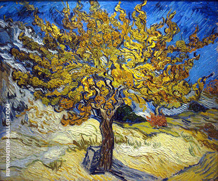 The Mulberry Tree St Remy By Vincent van Gogh