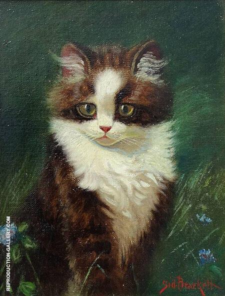 Tuxedo Kitten Painting By Sidney Lawrence Brackett - Reproduction Gallery