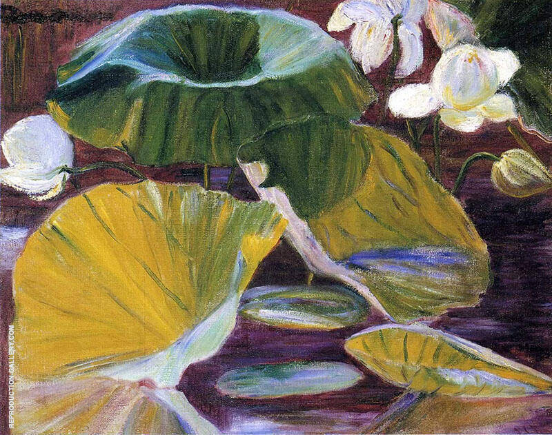 Lotus Flowers Oya Japan By Lilla Cabot Perry
