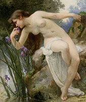 Fragrant Iris By Guillaume Seignac