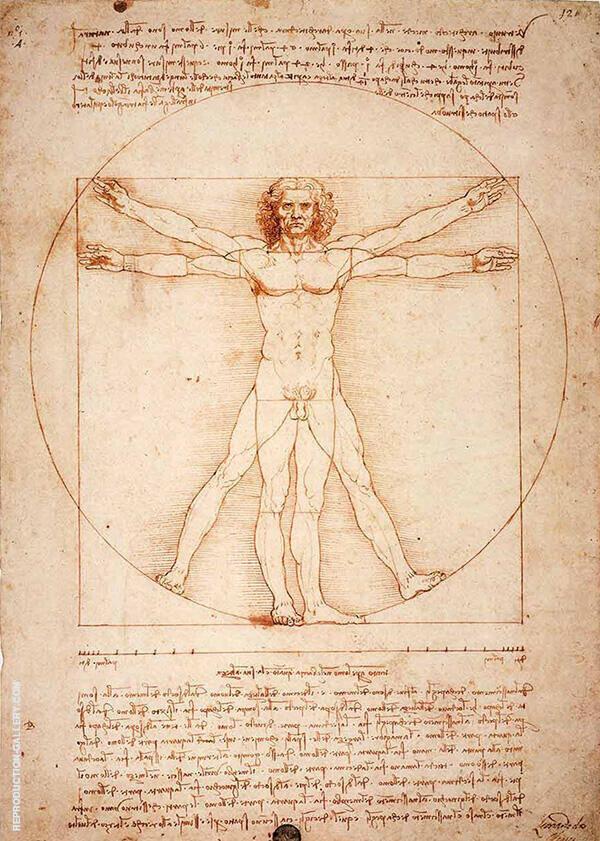 Vitruvian Man By Leonardo da Vinci