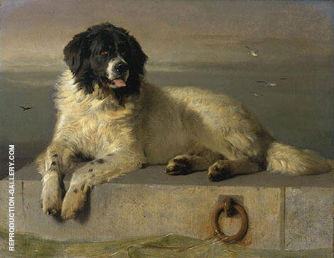 A Distinguished Member of The Humane Society 1838 By Edwin Henry Landseer