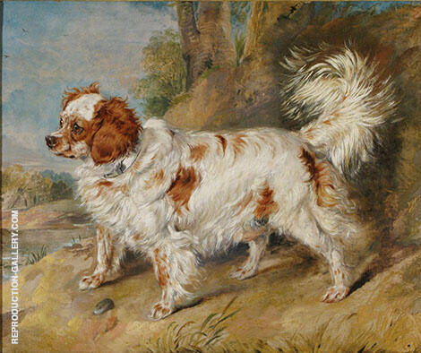 Mr Plumbers Dog 1819 By Edwin Henry Landseer