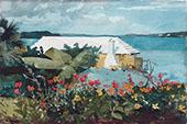 Flower Garden and Bungalow Bermuda 1899 By Winslow Homer
