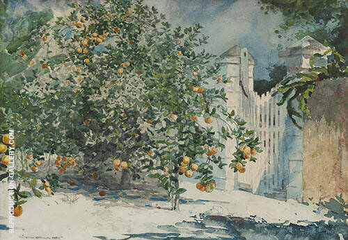 Orange Tree By Winslow Homer