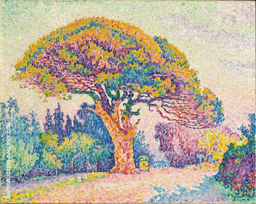 The Pine Tree at Saint Tropez 1909 Painting By Paul Signac
