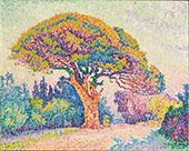 The Pine Tree at Saint Tropez 1909 By Paul Signac