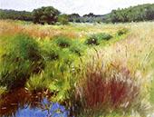 Marshland Medfield 1890 By Dennis Miller Bunker