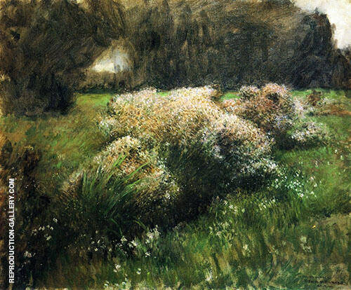 Wild Asters Study 1889 By Dennis Miller Bunker