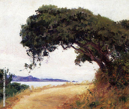 Point Lobos Oak Tree 1918 Painting By Guy Rose - Reproduction Gallery