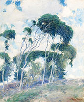Study for Windswept Trees Laguna 1917 By Guy Rose