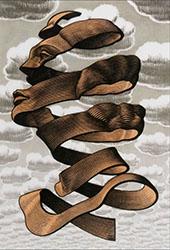Peel By Maurits Cornelis Escher