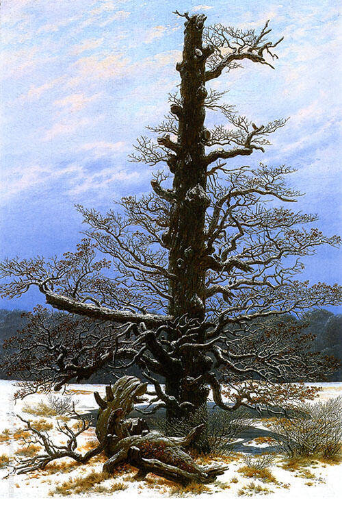 The Oak Tree in The Snow 1829 By Caspar David Friedrich