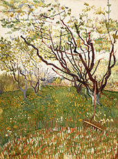 The Flowering Orchard 1888 By Vincent van Gogh