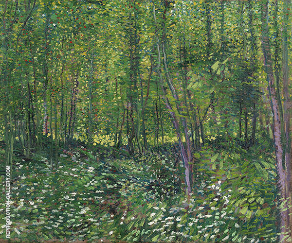 Trees and Undergrowth Summer 1887 Painting By Vincent van Gogh