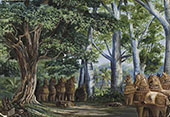 African Baobab Trees a Large Tamarind The God Aiyanar and His Two Wives By Marianne North