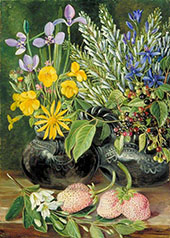 Chilean Flowers in Twin Mate Pot and Chili and Strawberries 1880 By Marianne North