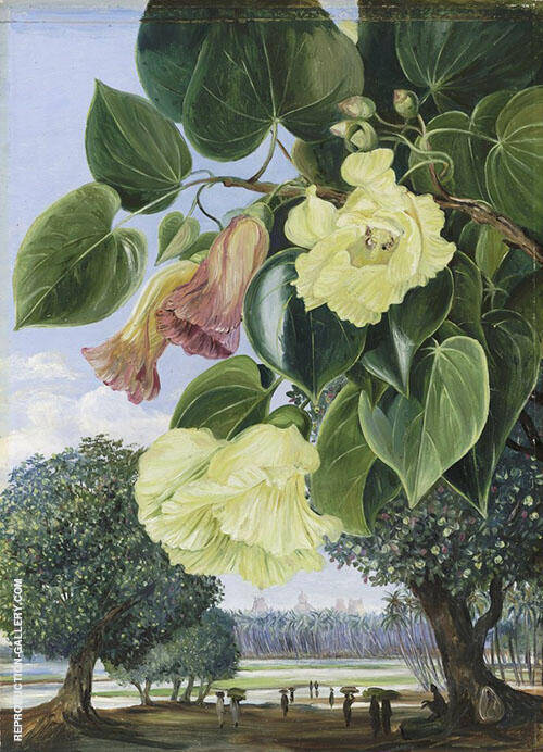 Foliage and Flowers of The Suriya or Portia The Pagodas of Madura in The Distance By Marianne North