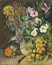 Group of Brazilian Forest Wild Flowers and Berries By Marianne North