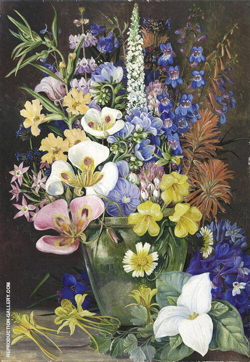 Group of Californian Wild Flowers By Marianne North